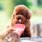 Outdoor Travel Portable Pet Drinking Water Cup Water Feeder, Capacity: 350ml (Pink)
