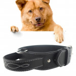 Collier Chien & Chat