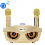 SD-306 2 in 1 Family KTV Portable Wireless Live Dual Microphone + Bluetooth Speaker(Gold)