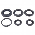 6 PCS Motorcycle Rubber Engine Oil Seal Kit for AG100