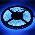 Epoxy Waterproof Blue LED 3528 SMD Rope Light, 120 LED/M, Length: 5M