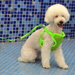 Pet Clothing Monochrome Mesh Harness Leash Dog Chest Suspenders with 120x1.0cm Traction Rope, Small Size, Bust: 26-58cm(Green)