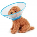 Elizabeth Pet Collar Headgear Ruff Funnel Cover Anti Bite Lick Safety Practical Neck Protective, Size: L, Suitable for Neck 26-3