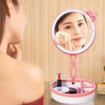 Multi-function Cute Cat Touch Screen Human Body Sensor USB Charging LED Makeup Mirror Desk Lamp Atmosphere Light with Storage Bo